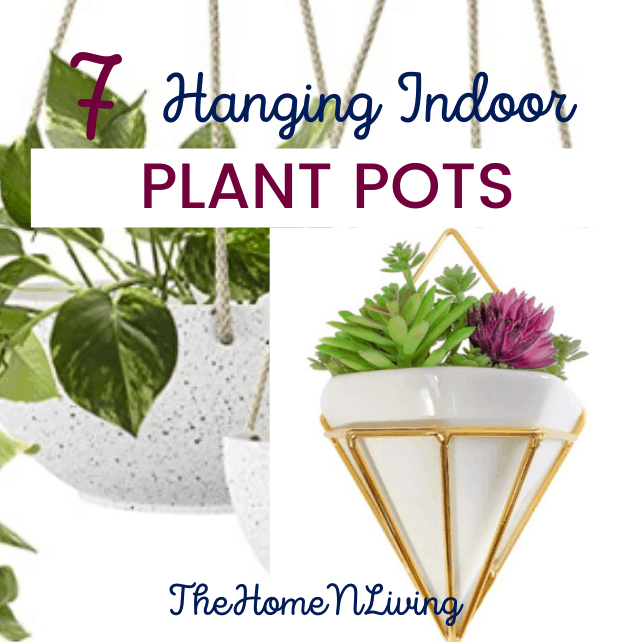 indoor hanging plant pots